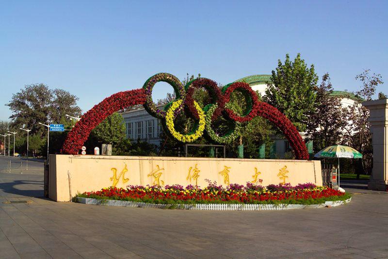 在少林寺武校毕业后可以报考北京、武汉、广州、上海等体育学院